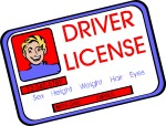 drivers-license-621806