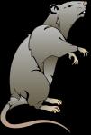 mouse-hi
